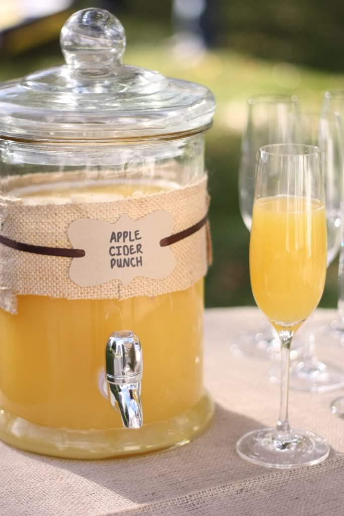 Cheers! Apple Cider Punch  