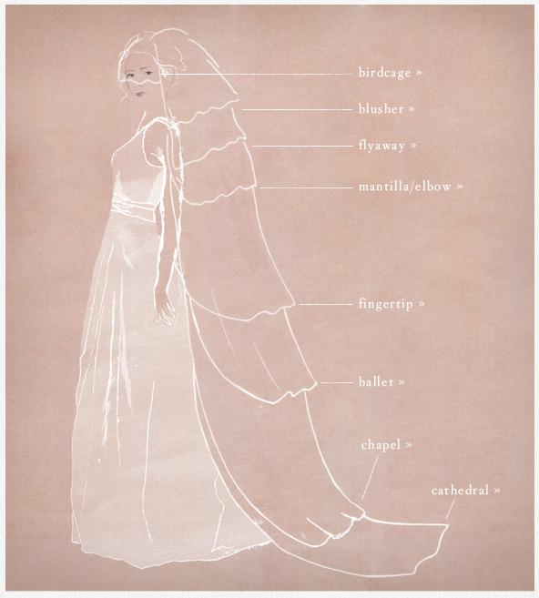 veil chart