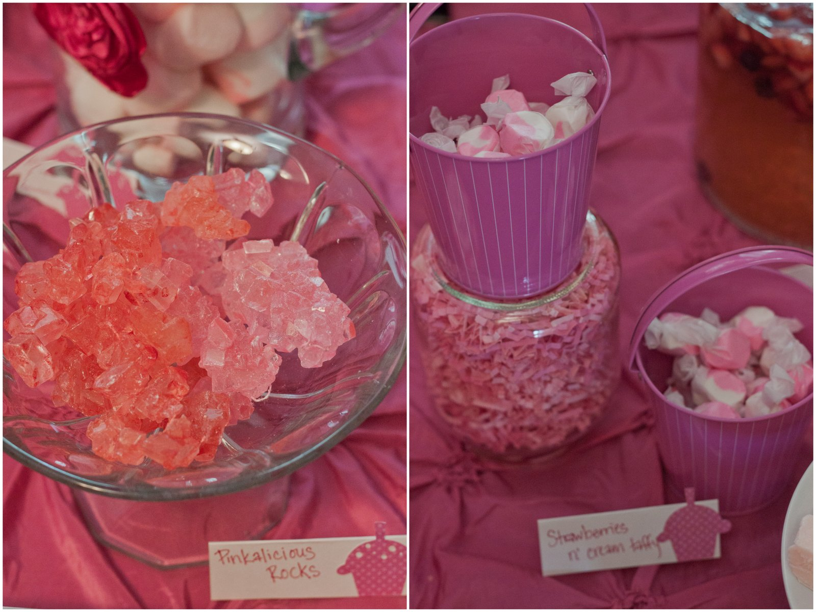 Party: Ava\'s Pinkalicious Party